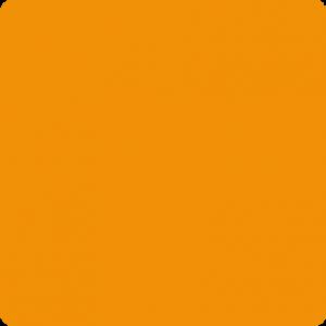 Pomarańczowy Ral 2009
