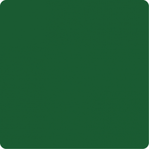 Zielony Ral 6028