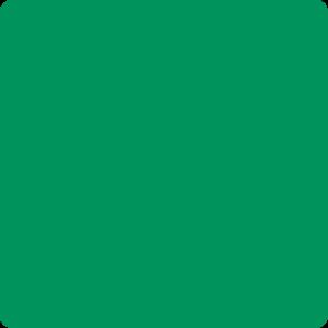 Zielony soczysty Ral 6032