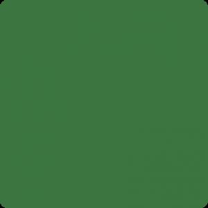 Zielony trawiasty Ral 6010
