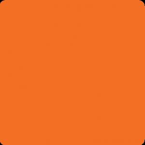 Pomarańczowy Ral 2004