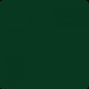 Zielony ciemny 386 M