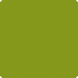 Zielony jasny CLS