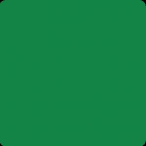 Zielony miętowy połysk RAL 6029