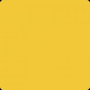 Żółty 220 M