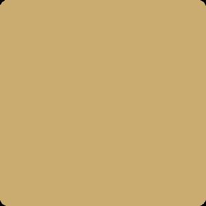 Żółty piaskowy