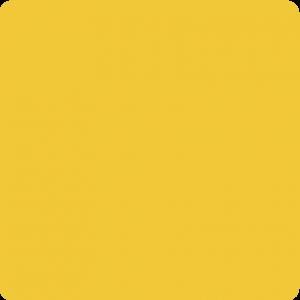 Żółty sygnałowy RAL 1003